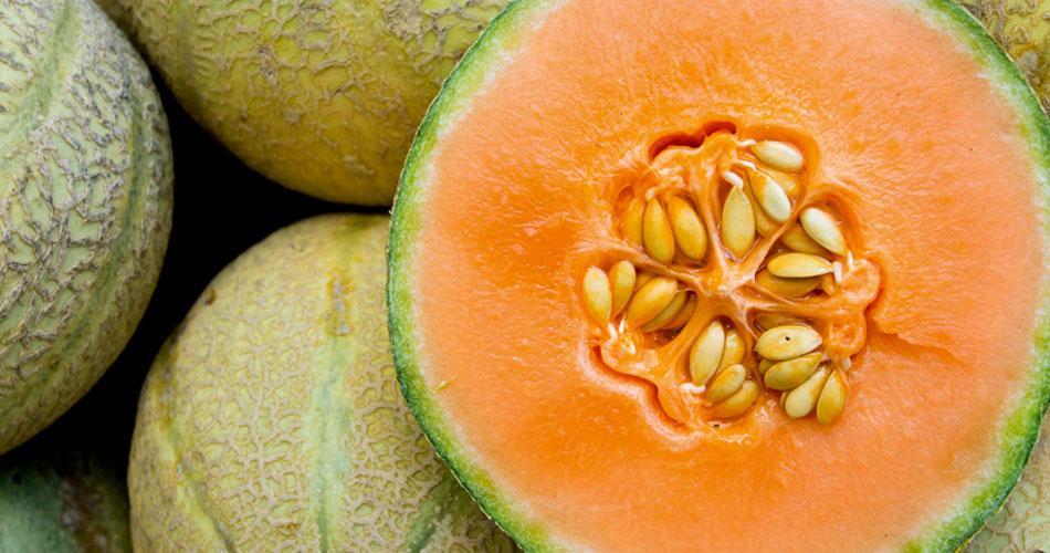 Melon La Chamade